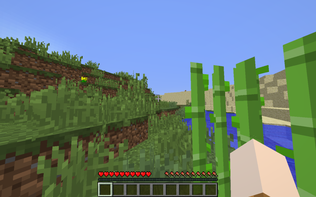 Minecraft New World Screen When Loaded